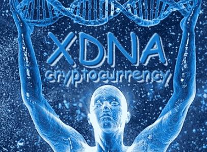 Майнинг на алгоритме HEX (монета XDNA)